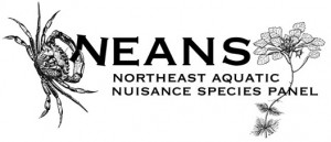 NEANS Panel logo